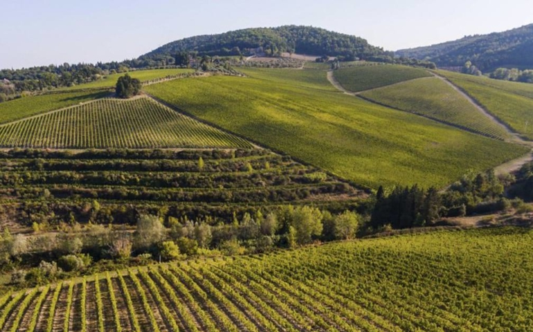 Busted: Italian Authorities Find 11,000 Bottles of Fake 'Super Tuscan' Wine