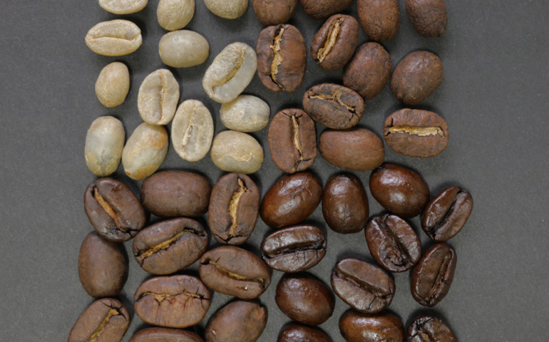 The Differences Between Light and Dark Roast Coffee Are Complex, Chemical, and Surprisingly Easy to Understand