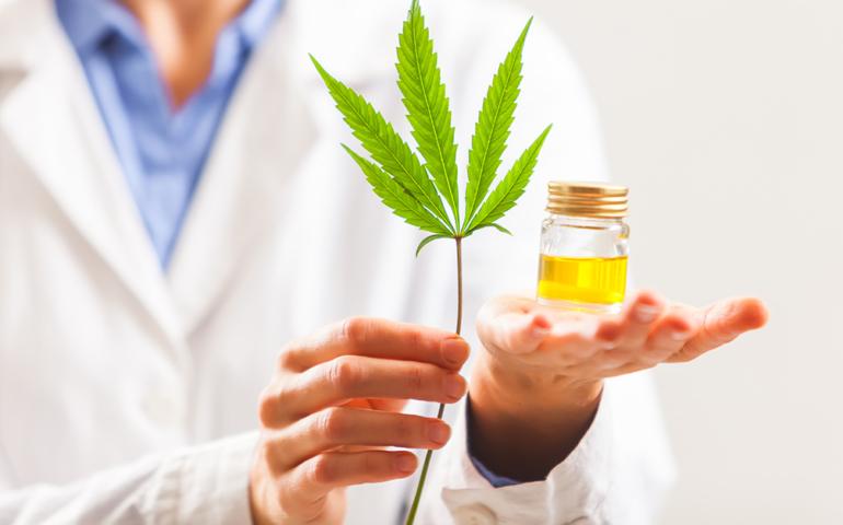 Pharma Company Hacks Tequila Bacteria to Produce THC