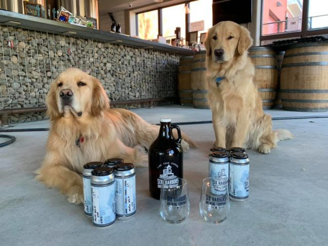 New York Brewery Employs 'brew Dogs' to Deliver Beer