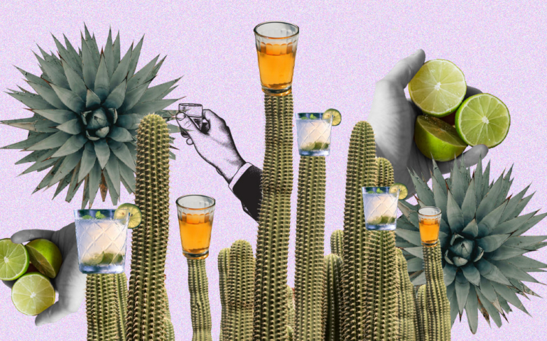 The 30 Best Tequilas for Every Budget (2020)