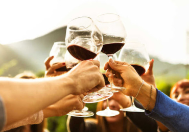 Top 15 Wine-Producing Countries in the World